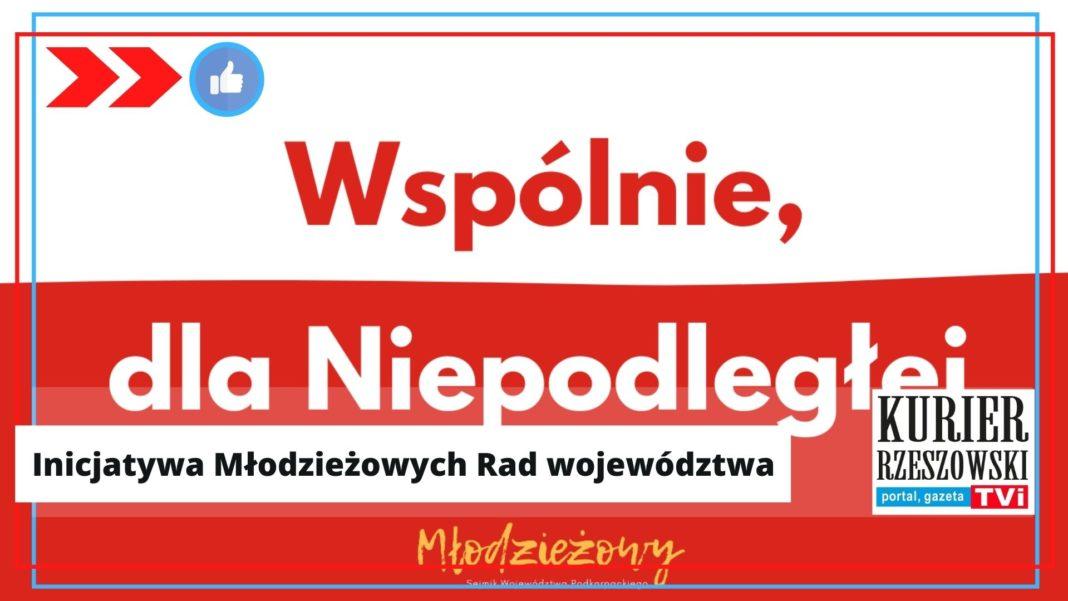 źródło: materiały prasowe Młodzieżowego Sejmiku Wojewódzkiego